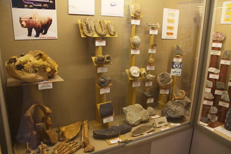 Visita a Hontza Museoa fundado por Enrique Huerta en Bizkaia