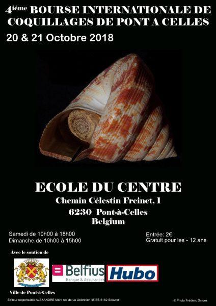 4th International Shell Show Of Pont-À-Celles - Belgium @ Ecole du centre   Pont-à-Celles   Wallonie   Bélgica