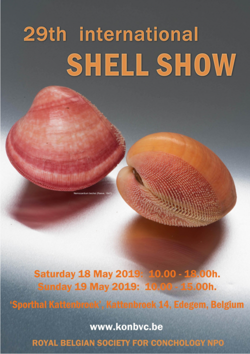 International Shell Show Antwerp - 2019 @ Sports Hall Kattenbroek | Edegem | Vlaanderen | Belgium